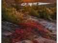 Acadia_20181012_278+280_edit_blog