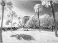Charleston_IR_20190329_224_edit_blog