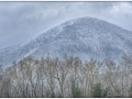 Smokies_20190120_154_edit_blog