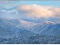 Smokies_20190124_515_edit_small