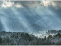 Smokies_20190125_173_edit_blog