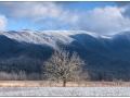 Smokies_20190125_218_edit_blog