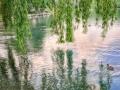 lake_reflections_iphone_blog