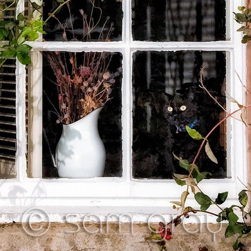Crail Cottage Window - Enlarged Detail