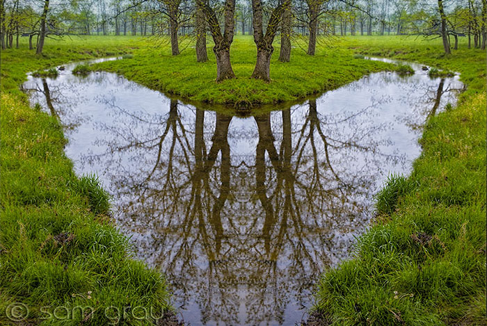 Mirrored_Reflections_700x466